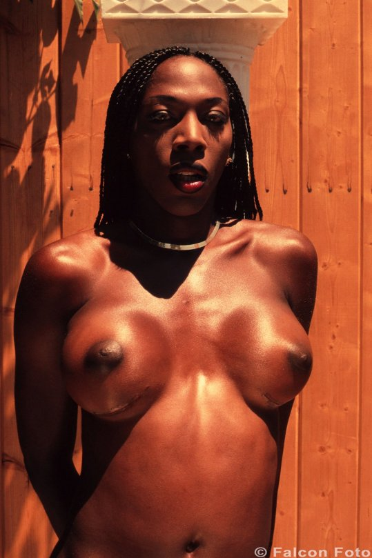 Transsexual thumnail galleries