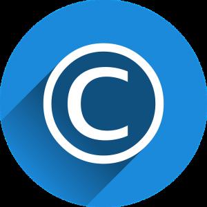 DMCA Policy at TS4Play.com